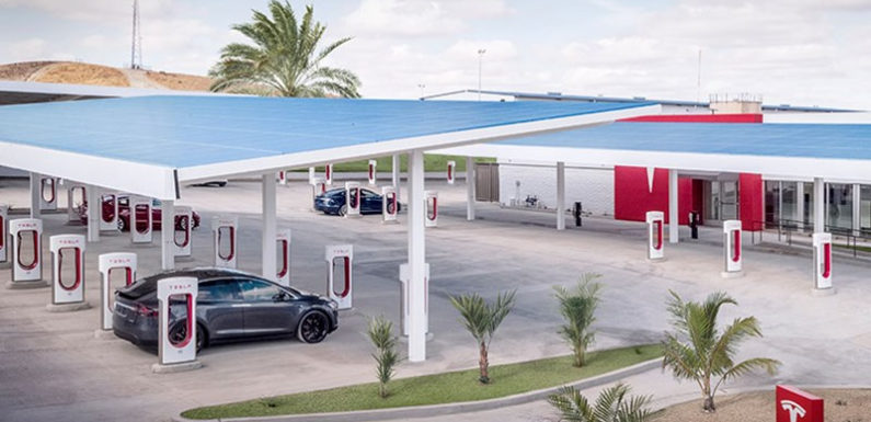 Илон Маск пообещал открыть электрозаправки Tesla в степи